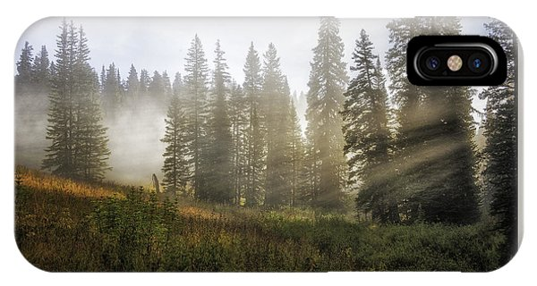Luminous Body iPhone Case - Enchanted Forest Of Kebler Pass  by Expressive Landscapes Fine Art Photography by Thom