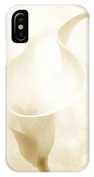 Enchanting IPhone Case