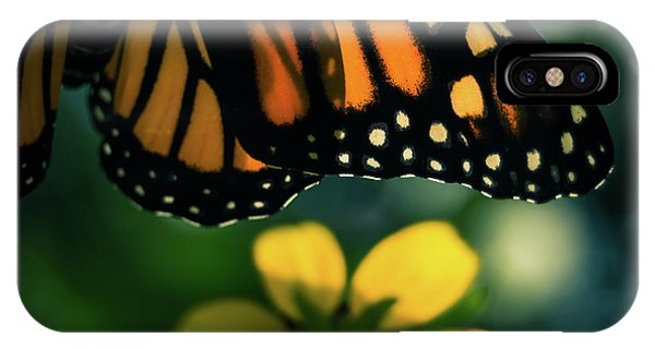 End Of Summer Monarch IPhone Case