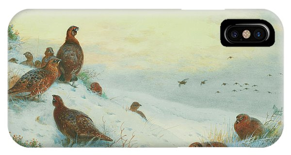Mallard iPhone Case - End Of The Season by Archibald Thorburn