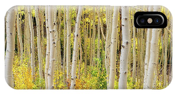 Endless Aspens Point 44 IPhone Case