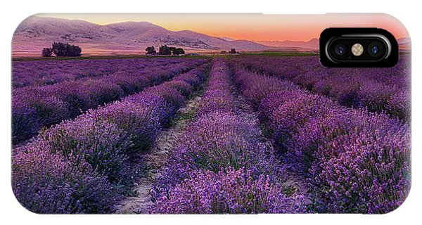 Endless Lavendar 65 IPhone Case