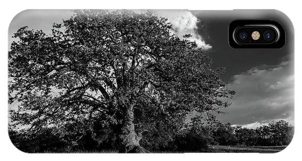Engellman Oak Palomar Black And White IPhone Case