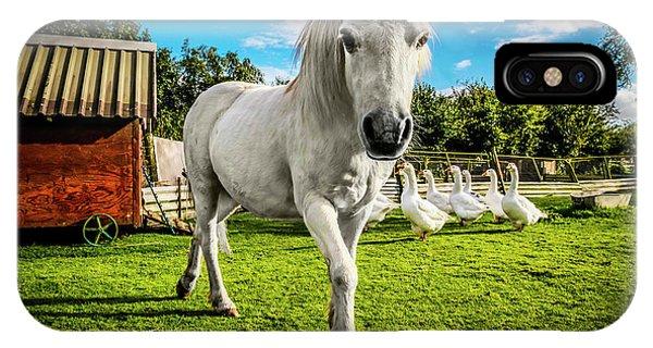 English Gypsy Horse IPhone Case