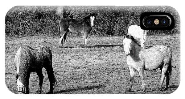 English Horses IPhone Case