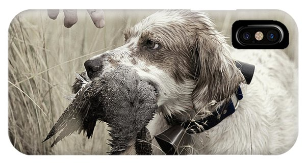 Upland iPhone Case - English Setter And Hungarian Partridge - D003092a by Daniel Dempster