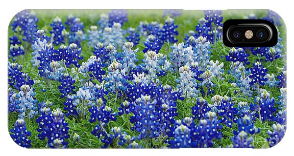 Ennis Bluebonnets IPhone Case