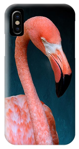 Entirely Unimpressed Flamingo IPhone Case