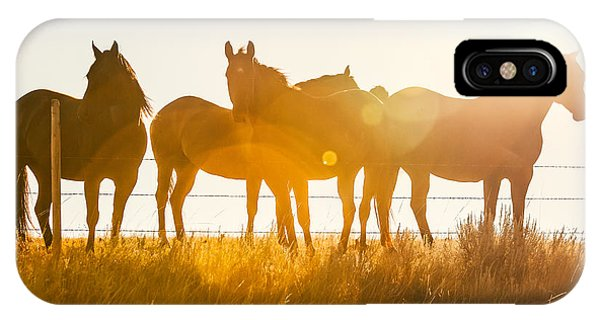 Horse iPhone X Case - Equine Glow by Todd Klassy