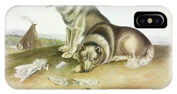 Sled Dog iPhone Case - Esquimaux Dog by John James Audubon