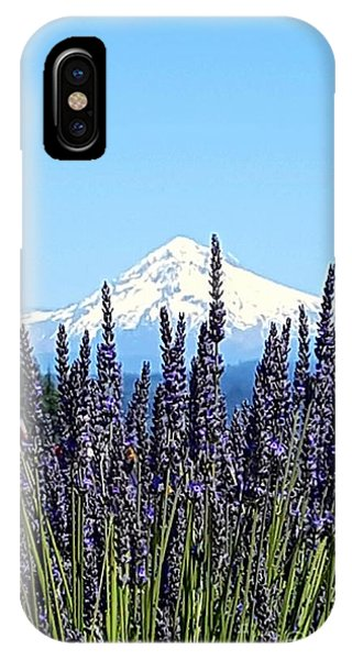 Essence Of Lavender IPhone Case