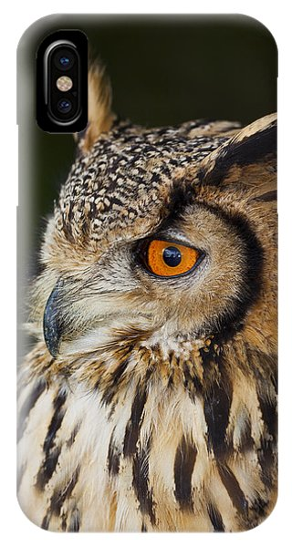 Eurasian Eagle-owl Bubo Bubo IPhone Case