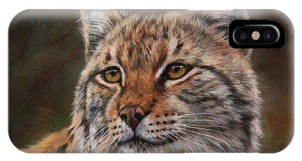 Lynx iPhone Case - Eurasian Lynx by David Stribbling