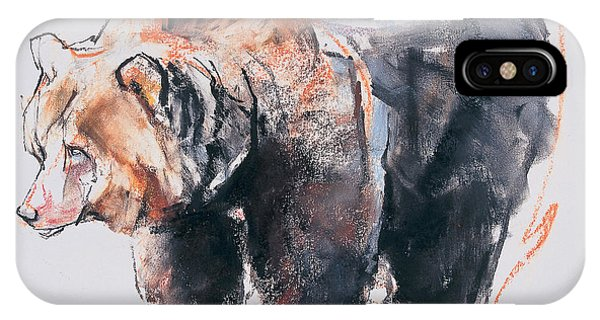 Bear iPhone Case - European Brown Bear by Mark Adlington