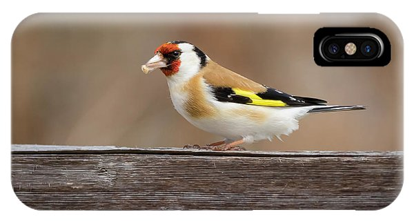 IPhone Case featuring the photograph European Goldfinch In Kenosha by Ricky L Jones