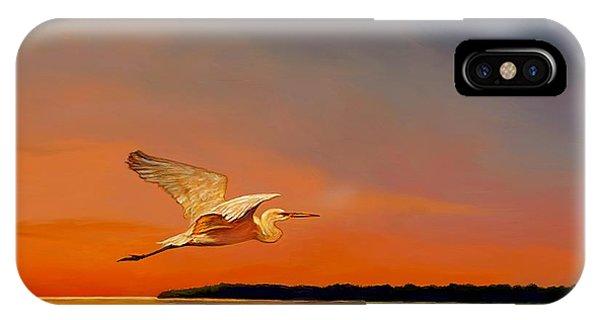 Evening Flight IPhone Case