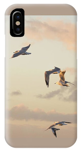 Evening Gulls IPhone Case