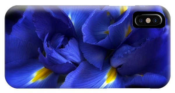 Evening Iris IPhone Case