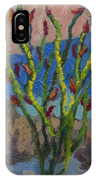 Evening Ocotillo IPhone Case