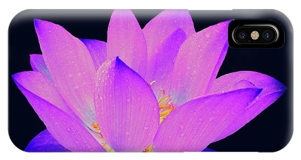 Evening Purple Lotus  IPhone Case