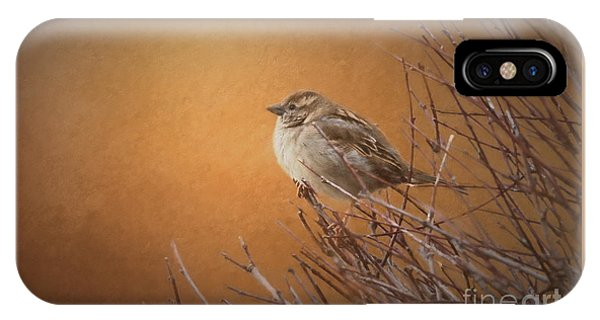 Evening Sparrow Song IPhone Case