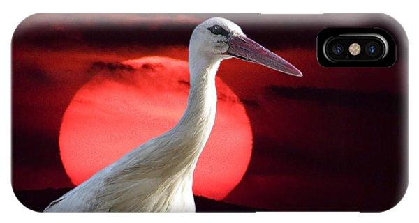 Evening Stork  IPhone Case
