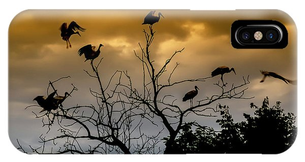 IPhone Case featuring the photograph Evening Storks by Cliff Norton