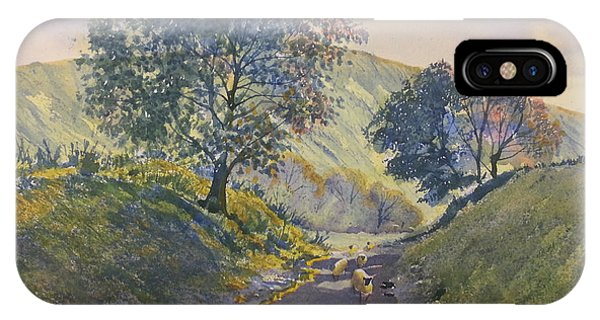 Evening Stroll In Millington Dale IPhone Case