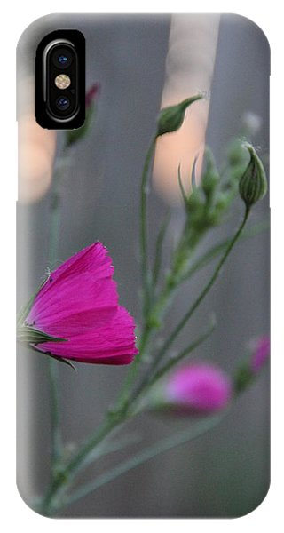 Evening Winecup IPhone Case