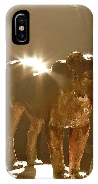 Evening's Light IPhone Case