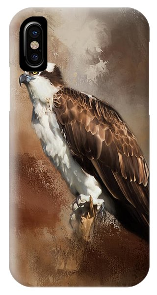 Ospreys iPhone Case - Ever Watchful by Kim Hojnacki