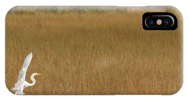 Everglades 429 IPhone Case