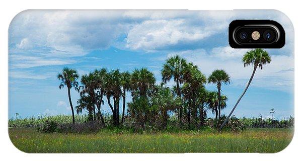 Everglades Landscape IPhone Case