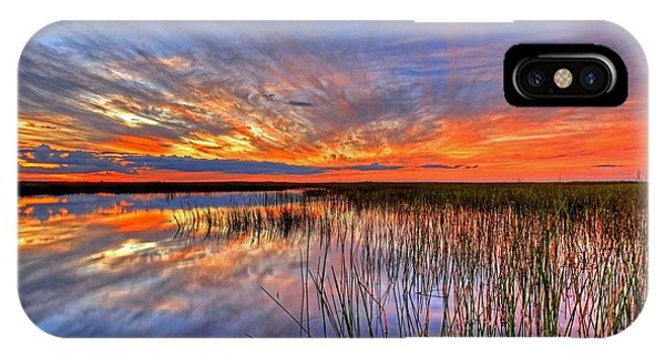 Everglades Sunset IPhone Case