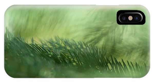 Evergreen Mist IPhone Case