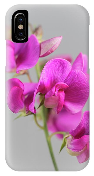 Everlasting 1 IPhone Case