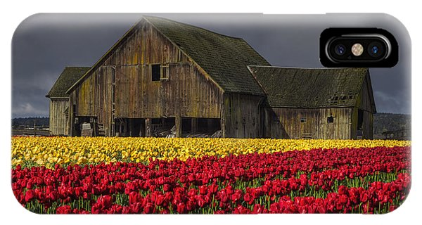 Everlasting Blooms IPhone Case