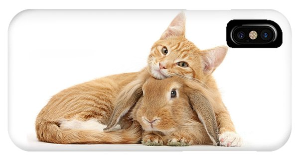 Everybody Needs A Bunny For A Pillow IPhone Case