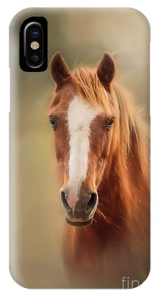 Everyone's Favourite Pony IPhone Case