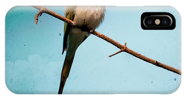 Exotic Birds - White Throated Bee Eater IPhone Case