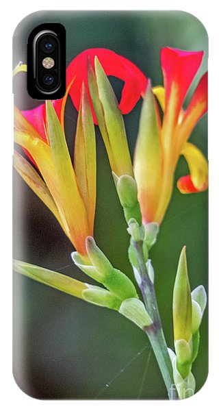 Exotic Flowers IPhone Case