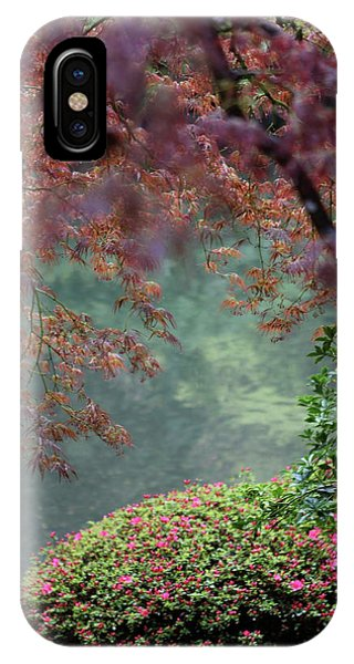 IPhone Case featuring the photograph Exploring Beauty by Brandy Little