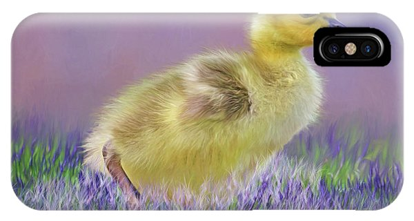 Goslings iPhone Case - Exploring Spring by Donna Kennedy