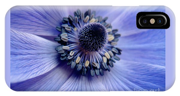 Expressive Blue And Purple Floral Macro Photo 706 IPhone Case