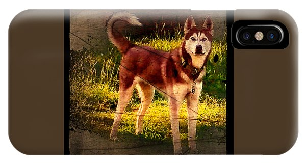 IPhone Case featuring the photograph Expressive Mixed Media Husky A4116 by Mas Art Studio