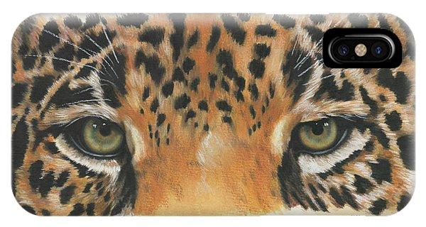 Big Cat iPhone Case - Jaguar Gaze by Barbara Keith
