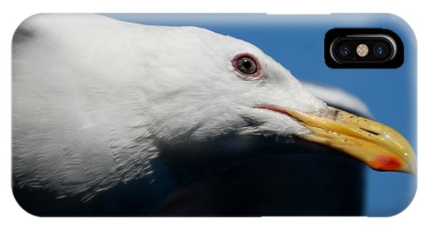 Eye Of A Seagull IPhone Case