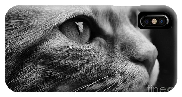 Eye Of The Cat IPhone Case