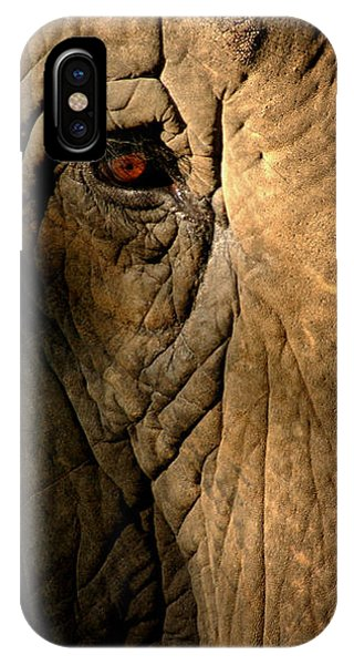 Eye Of The Elephant IPhone Case