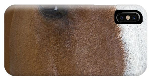 Eye On You Horse IPhone Case